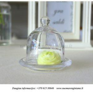 97-stiklinis-indelis-su-dangteliu